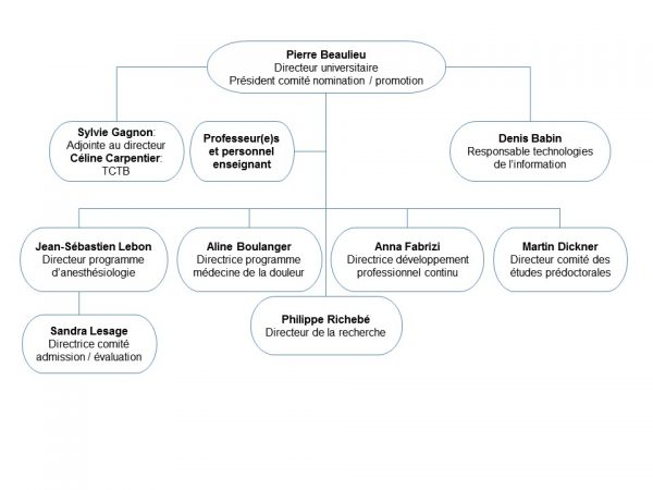 structure-organisationnelle